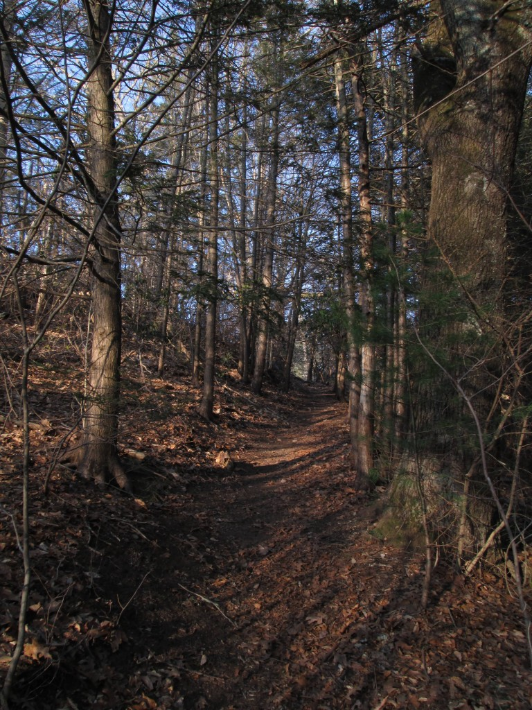 Path, Chester CT
